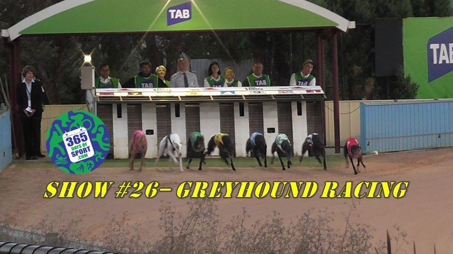Sport #26/365 – GREYHOUND RACING – 20.11.15