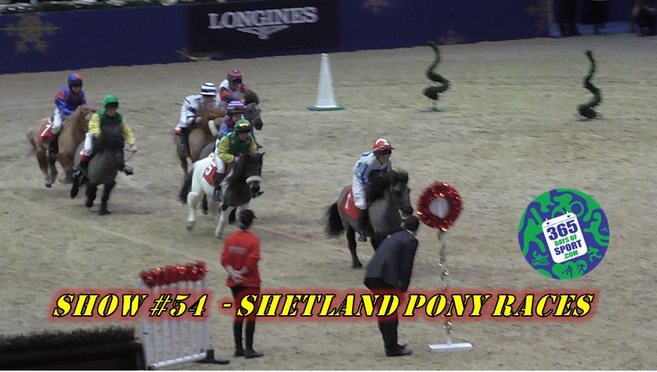 Show #54/365 – SHETLAND PONY RACES – 17.12.15