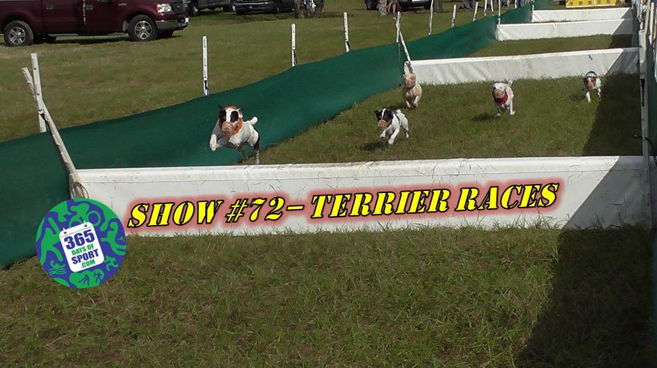 Show #72/365 – TERRIER RACING – 16.1.16
